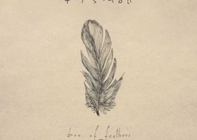 Fismoll – Box of feathers